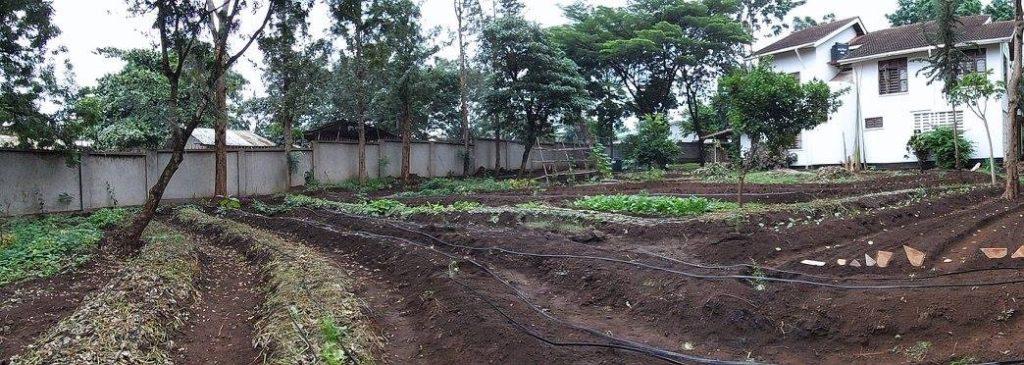 Concevoir mon jardin sous l'angle de la permaculture