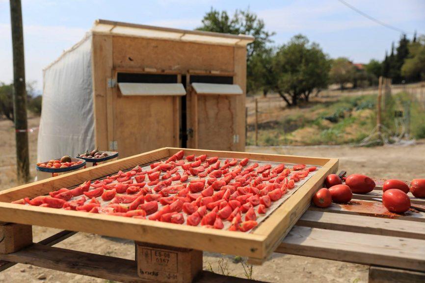 Ecoconstruction : Séchoir solaire collectif à inertie